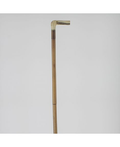 Horse measuring cane